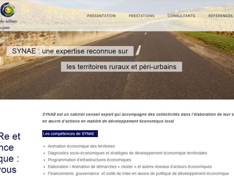 Site Internet Synae